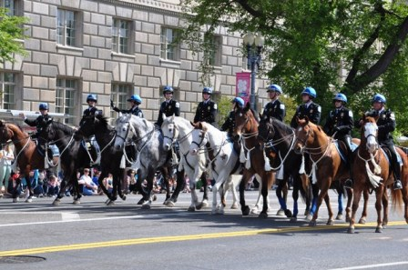 Cảnh sát ngựa. Ảnh: HM