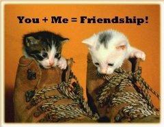 Tình bạn.