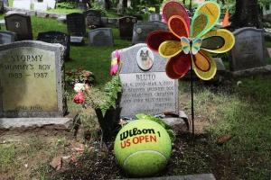 Nghĩa trang chó