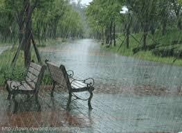 Chiều mưa.