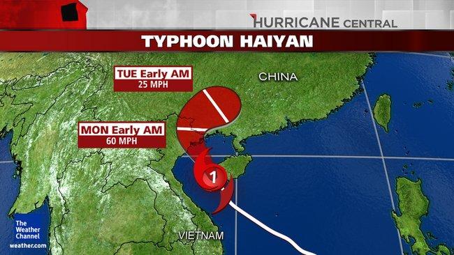 Haiyan Cat 1