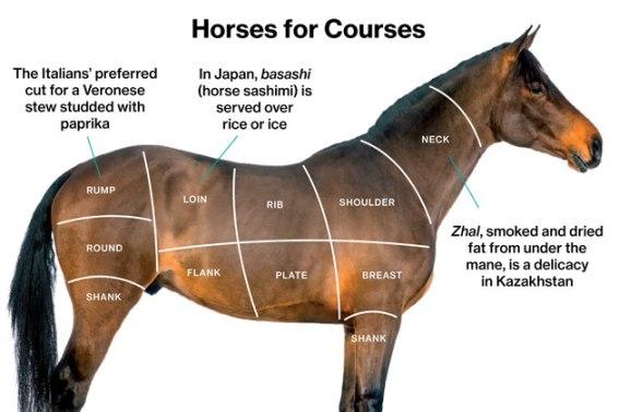 Cách chia thịt ngựa. Ảnh: internet
