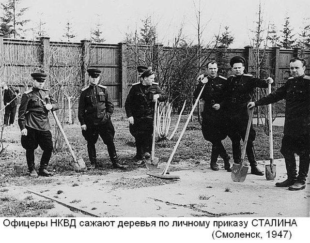 Hồng quân Liên Xô