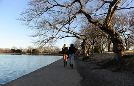Lối đi dạo quanh hồ. Ảnh; HM