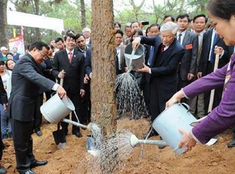 TBT Nguyễn Phú Trọng trồng cây thông ở Vật Lại. ảnh: Internet