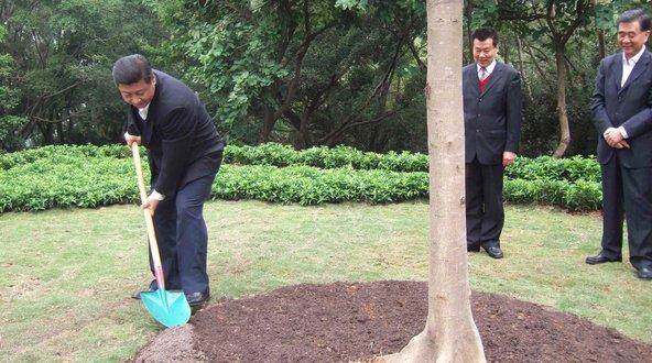 TBT Đảng Trung Quốc trồng cây to như TBT Trọng.