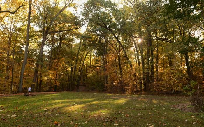 Luber Run Park