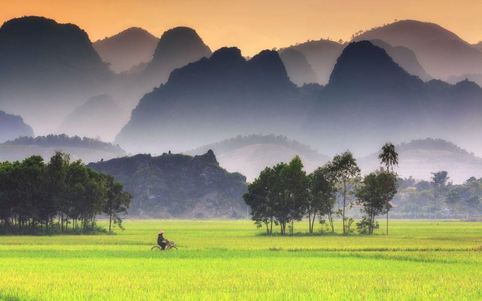 Thanh bình làng quê. Ảnh: Thành Nam FB